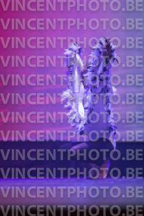 Photo N°701-32877
